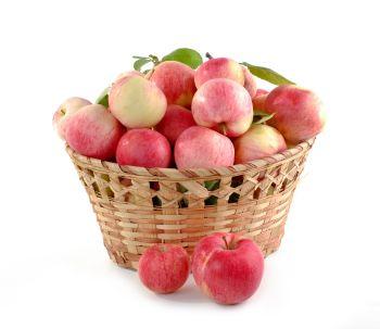 Košík plný jablek